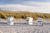 Beach Chairs on the Beach of Ahrenshoop, Germany