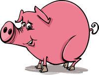 farm pig cartoon illustration