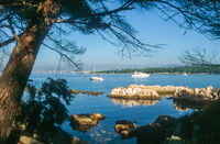 Coast of the Ile Saint Honorat