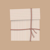 Gift package cardboard box with ribbon