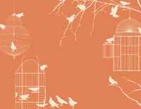 Birds and birdcages postcard 6