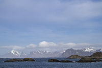 coast by Henningsvaer