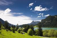 Lake Haldensee and green nature, Austria