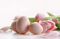 Pink tulips with water droplets and eggs on white