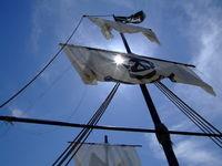 Pirat im Gegenlicht...