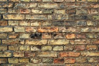 Backsteinmauer / Brick Wall