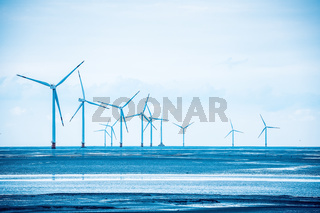 wind power farm in coastal mud flat