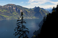 View from the Buergenstock over Lake Lucerne