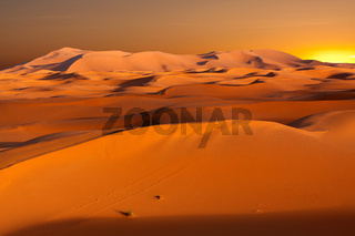 Dunes in Morocco at sunset