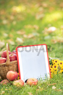 Basket of red apples and tablet PC