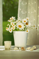 Summer daisies in vase in front of window