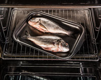 Dorado fish in the oven.