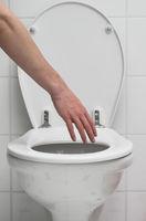 Grasp the toilet
