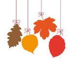 4 Autumn Leaves