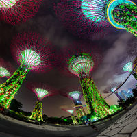 Fisheye Shot of Illuminated Towers at Garden by the Bay in Singapore