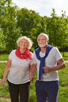 Senioren halten Hände im Park