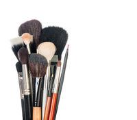 Professional make-up brush