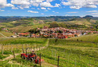 Vineyards and town of Barolo in Italy.