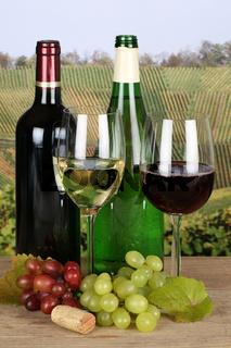 Rotwein und Weißwein in Flaschen