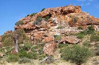 landscape at Mapungubwe National Park, SA