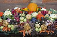 Buntes Arrangement verschiedener Sorten von Gemüse an einem Marktstand