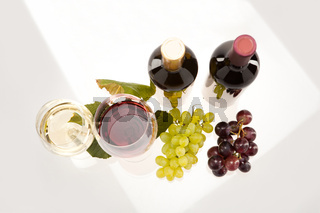 Red and white wine with grapes and wine bottle
