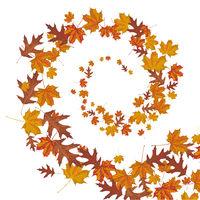 Autumn Foliage Wind Helix