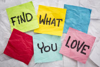 find what you love advice
