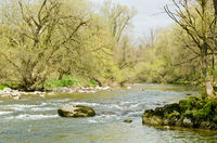 The River of the Year Argen in Spring