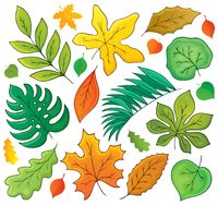 Leaves theme collection 1 - picture illustration.