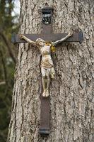 Crucifix on a tree