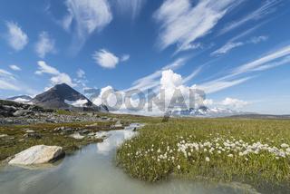 Blick zum Akkamassiv, Stora Sjoefallet Nationalpark, Welterbe Laponia, Lappland