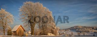 Wintermorgen #2