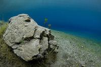 Unterwasserlandschaft im Grünen See, Tragöss, Steiermark