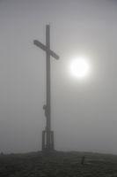 Heiglkopf in mist