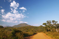 street and landscape at Marakele National Park, SA