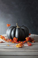 Black colored pumpkin with berries and leaves on t