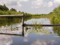 Dutch waterway in nature