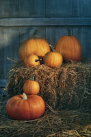 Assortment of pumpkins on hay in the barn