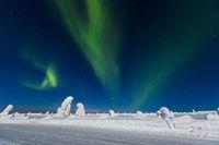 Polar lights (aurora borealis), Kittila, Finland