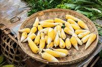 Organic corn ears at asian market