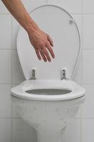 Grasp the toilet 2