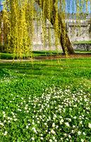 Spring park (France, Fougeres )
