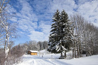 Winter landscape in Bavaria, Germany