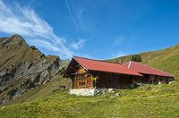 mountain pasture Alp Oberniesen,Bernese Alps
