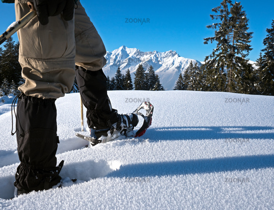 Snow shoes with alpine panorama
