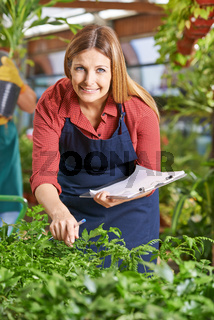 Gärtnerin in Gärtnerei kontrolliert Pflanzen