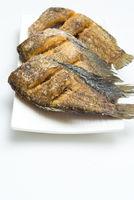 Fried Snakeskin gourami