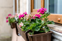 Flowerbox outdoors
