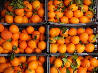 Orangen Markt